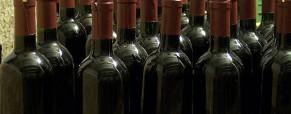 Connaître le vin