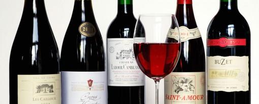 Une collection de vin unique au monde